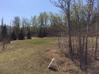 Photo 4: 57 Casa Vista Drive: Rural Sturgeon County Rural Land/Vacant Lot for sale : MLS®# E4195502
