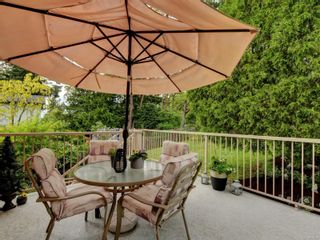 Photo 12: 1224 Reynolds Rd in : SE Maplewood House for sale (Saanich East)  : MLS®# 879393