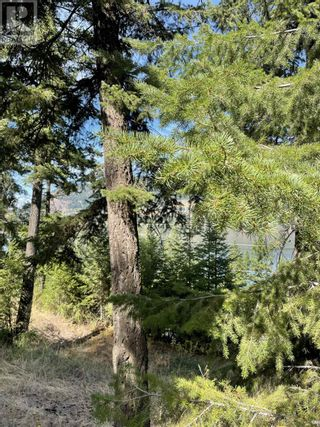 Photo 2: 1803 SOUTH LAKESIDE DRIVE in Williams Lake: Vacant Land for sale : MLS®# R2612495