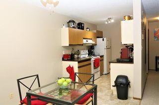 Photo 7: 307 6212 180 Street in Edmonton: Zone 20 Condo for sale : MLS®# E4256691