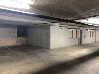"""Photo 22: 215 13277 108 Avenue in Surrey: Whalley Condo for sale in """"PACIFICA"""" (North Surrey)  : MLS®# R2504197"""