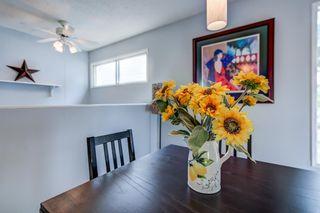 Photo 12: 3613 44 Avenue in Edmonton: Zone 29 House for sale : MLS®# E4246393