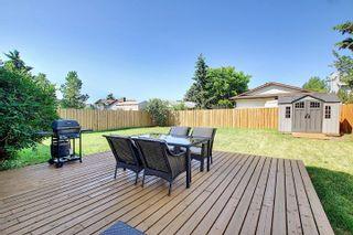 Photo 5: 9832 187 Street in Edmonton: Zone 20 House for sale : MLS®# E4253744