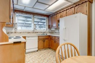 Photo 8: 3432 LANE CR SW in Calgary: Lakeview House for sale : MLS®# C4279817