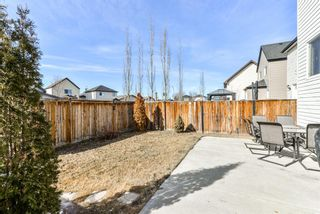 Photo 28: 368 Copperstone Grove SE in Calgary: Copperfield Detached for sale : MLS®# A1084399