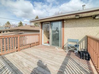 Photo 38: 2211 37 Street SE in Calgary: Forest Lawn Detached for sale : MLS®# A1092866