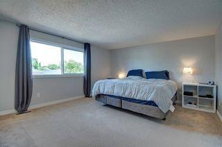 Photo 14: 20 MCKENNA Mews SE in Calgary: McKenzie Lake Detached for sale : MLS®# C4305584