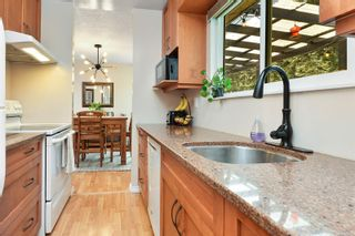 Photo 16: 685 Daffodil Ave in Saanich: SW Marigold House for sale (Saanich West)  : MLS®# 882390