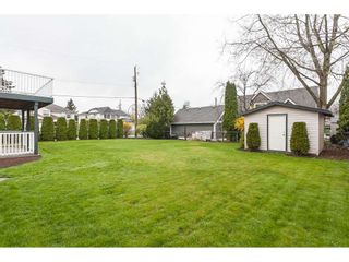 """Photo 19: 5005 214A Street in Langley: Murrayville House for sale in """"Murrayville"""" : MLS®# R2354511"""