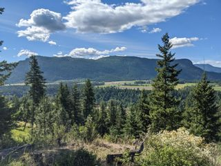 Photo 11: 455 Albers Road, in Lumby: Agriculture for sale : MLS®# 10235228