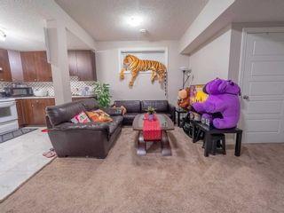 Photo 28: 17228 71 Street in Edmonton: Zone 28 House for sale : MLS®# E4254072