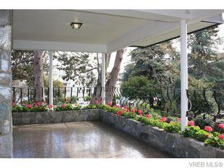 Photo 3: 211 1400 Newport Ave in VICTORIA: OB South Oak Bay Condo for sale (Oak Bay)  : MLS®# 743837