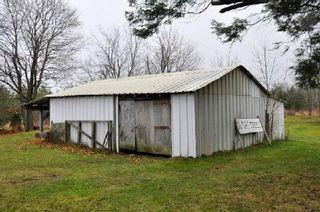 Photo 5: 3420 Cedar Springs Road in Burlington: Rural Burlington House (Bungalow-Raised) for sale : MLS®# W3072593