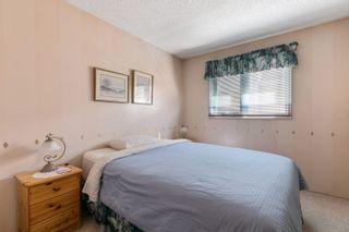 Photo 12: 9831 185 Street in Edmonton: Zone 20 House for sale : MLS®# E4262793