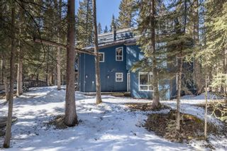 Photo 47: 35 Burntall Drive: Bragg Creek Detached for sale : MLS®# A1090777