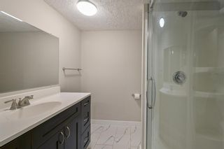 Photo 21: 162 REDSTONE Drive in Calgary: Redstone Semi Detached for sale : MLS®# A1102876