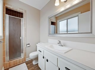 Photo 19: 16 Wood Crest Close SW in Calgary: Woodlands Detached for sale : MLS®# A1072752