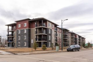Photo 29: 217 12025 22 Avenue in Edmonton: Zone 55 Condo for sale : MLS®# E4235088