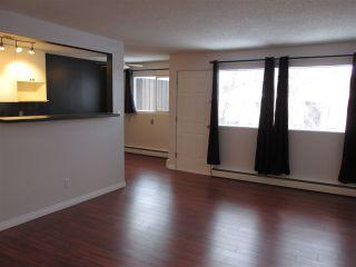 Photo 4: 35 5627 105 Street in Edmonton: Zone 15 Condo for sale : MLS®# E4228529