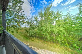 Photo 32: 141 1196 HYNDMAN Road in Edmonton: Zone 35 Condo for sale : MLS®# E4262588