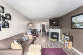"""Photo 3: 103 9151 NO 5 Road in Richmond: Ironwood Condo for sale in """"KINGSWOOD TERRACE"""" : MLS®# R2087407"""