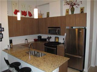 Photo 4: # 303 280 ROSS DR in New Westminster: Fraserview NW Condo for sale : MLS®# V1034557