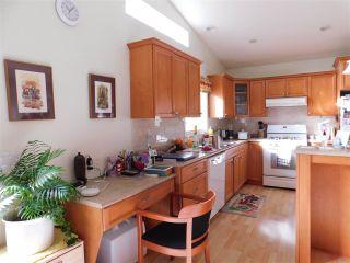 Photo 26: 9258 172 Street in Surrey: Fleetwood Tynehead House for sale : MLS®# R2539746
