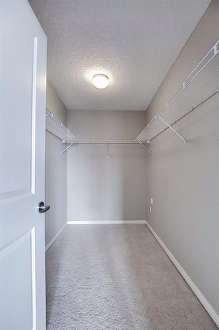 Photo 24: 302 429 14 Street NW in Calgary: Hillhurst Apartment for sale : MLS®# A1075167