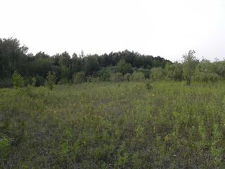 Photo 3: 22084 PT 2 PARCEL, WHITMORE RD in FORT FRANCES: Vacant Land for sale : MLS®# TB212402