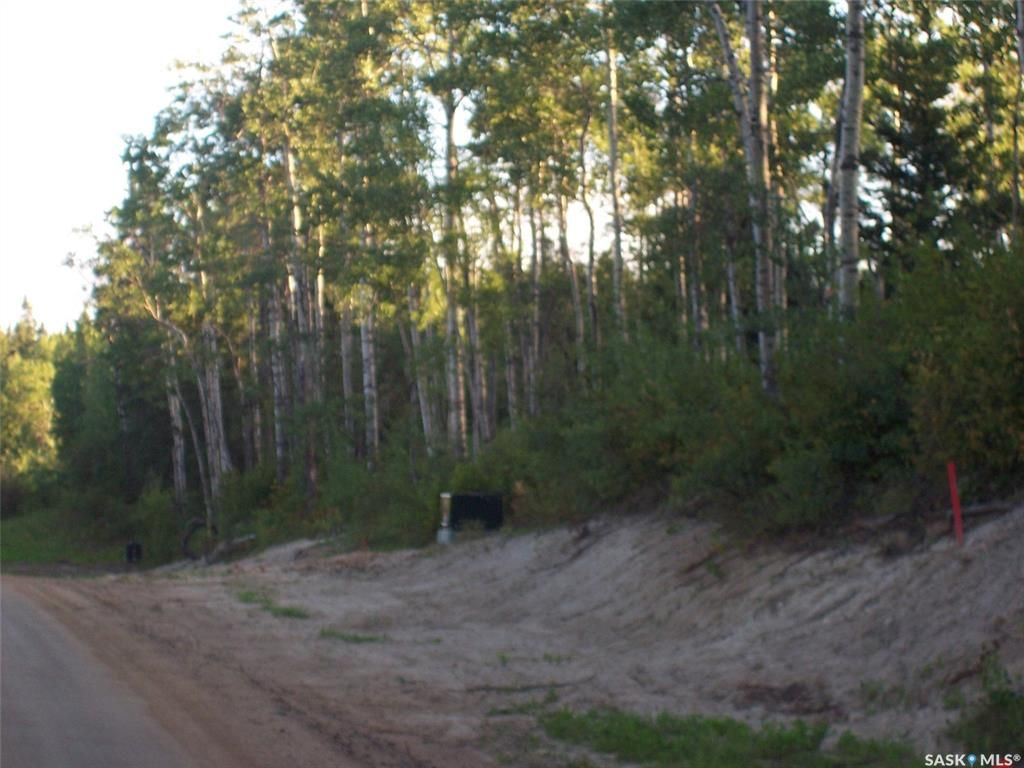 Main Photo: Lot 4 Rural Address in Christopher Lake: Lot/Land for sale : MLS®# SK846176