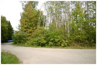 Photo 20: Lot 1 Eagle Bay Road in Eagle Bay: Eagle Bay Estates Vacant Land for sale : MLS®# 10105919