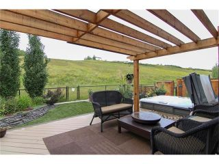 Photo 33: 100 CHAPARRAL VALLEY Terrace SE in Calgary: Chaparral House for sale : MLS®# C4086048