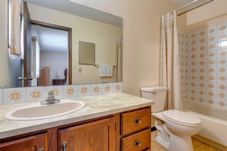 Photo 21: 147 Templevale Place NE in Calgary: Temple Detached for sale : MLS®# A1144568
