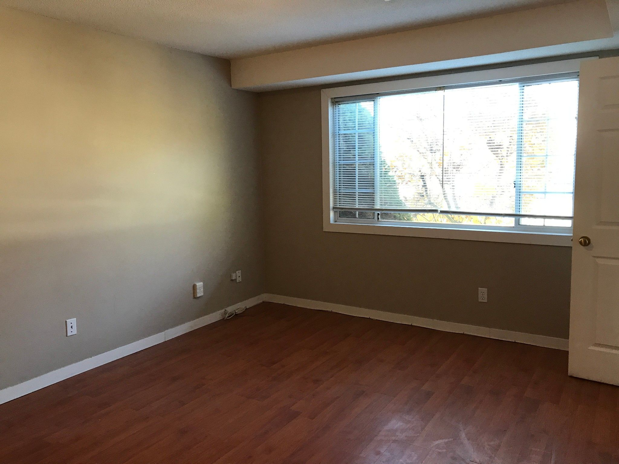 Photo 6: Photos: 5616 Hipwell Pl. in Sardis: House for rent