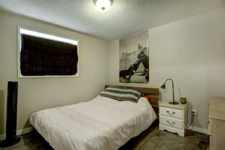 Photo 12: 131 Woodridge Place SW in Calgary: Woodlands Detached for sale : MLS®# A1142990