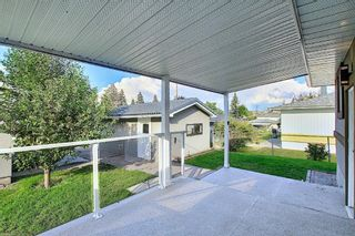 Photo 19: 24 Hyslop Drive SW in Calgary: Haysboro Detached for sale : MLS®# A1154443