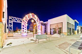 Photo 31: 133 SAVANNA ST NE in Calgary: Saddle Ridge House for sale : MLS®# C4301343