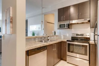 Photo 7: 407 1010 Centre Avenue NE in Calgary: Bridgeland/Riverside Apartment for sale : MLS®# A1102043