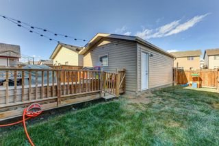 Photo 29: 283 Everglen Way SW in Calgary: Evergreen Detached for sale : MLS®# A1041697