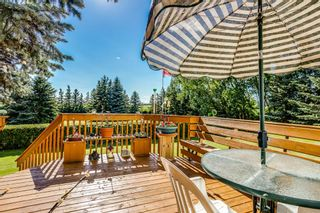 Photo 9: 19 Butte Hills Court in Rural Rocky View County: Rural Rocky View MD Detached for sale : MLS®# A1118338