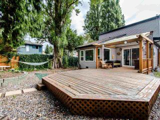 Photo 18: 3009 MAPLEBROOK Place in Coquitlam: Meadow Brook House for sale : MLS®# R2402491