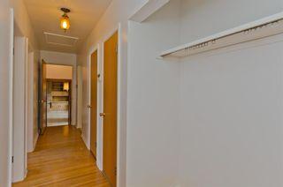 Photo 25: 7208 11 Street SW in Calgary: Kelvin Grove Detached for sale : MLS®# A1079702