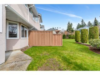 "Photo 33: 131 15501 89A Avenue in Surrey: Fleetwood Tynehead Townhouse for sale in ""AVONDALE"" : MLS®# R2558099"