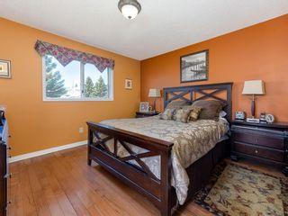 Photo 27: 113 Macewan Park View NW in Calgary: MacEwan Glen Detached for sale : MLS®# A1100392
