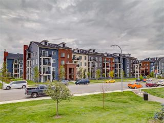 Photo 39: #3413 755 COPPERPOND BV SE in Calgary: Copperfield Condo for sale : MLS®# C4086900