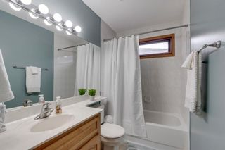 Photo 40: 160 Mt Robson Circle SE in Calgary: McKenzie Lake Detached for sale : MLS®# A1099361
