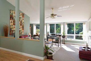 Photo 17: 1481 PARK Avenue: Roberts Creek House for sale (Sunshine Coast)  : MLS®# R2209232
