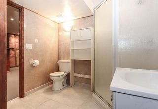 Photo 23: 2427 47 Street SE in Calgary: Forest Lawn Detached for sale : MLS®# A1150911