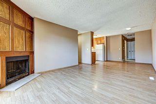 Photo 11: 165 Castlebrook Way NE in Calgary: Castleridge Semi Detached for sale : MLS®# A1107491