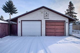 Photo 25: 4323 49 Street NE in Calgary: Whitehorn Detached for sale : MLS®# A1043612